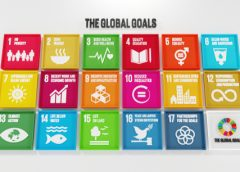 Businesses Play An Important Role in Sustainable Development