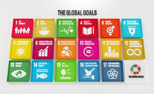 How Businesses Can Help With Sustainable Development